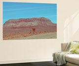 Desert Mountain Wall Mural by  NaxArt