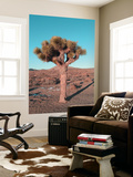 Joshua Tree Wall Mural by  NaxArt