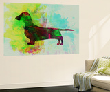 Dachshund Watercolor Wall Mural by  NaxArt