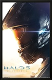 Halo 5 - Teaser Prints