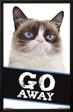 Grumpy Cat- Go Away Prints