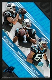 Carolina Panthers- Team 15 Photo