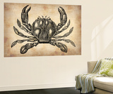 Vintage Crab Wall Mural by  NaxArt