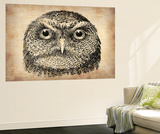 Vintage Owl Face Wall Mural by  NaxArt