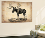 Vintage Moose Wall Mural by  NaxArt
