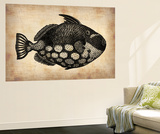 Vintage Fish Wall Mural by  NaxArt