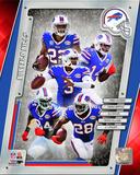 Buffalo Bills 2014 Team Composite Photo