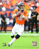 Peyton Manning 2015 Action Photo