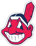 MLB Cleveland Indians Vinyl Magnet Magnet