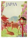 Japan - Todaiji Great Eastern Temple - Nara Temple Deer Prints