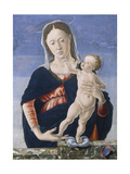 Madonna and Child, c.1467-8 Giclee Print by Marco Zoppo