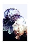 Smoke without Fire IV, 2015 Giclee Print by Varpu Kronholm