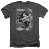Wonder Woman- Princess Of The Amazons T-shirts