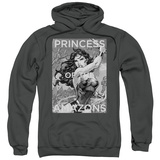 Hoodie: Wonder Woman- Princess Of The Amazons Pullover Hoodie