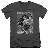 Wonder Woman- Princess Of The Amazons V-Neck T-shirts