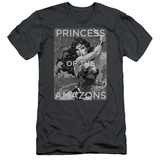Wonder Woman- Princess Of The Amazons (Slim Fit) T-Shirt