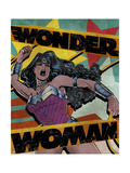 Wonder Woman Design Plastic Sign