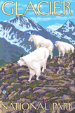 Mountain Goats Scene, Glacier National Park, Montana Plastic Sign by  Lantern Press
