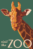 Visit the Zoo, Giraffe Up Close Plastic Sign by  Lantern Press