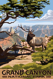Grand Canyon National Park - Elk & Point Imperial Plastic Sign by  Lantern Press