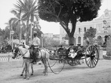 Cuban Volanta or Large Wheeled Carriage Transports Tourists Photo