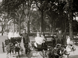Central Park, Goat Carriages in the Park, New York, N.Y. Photo