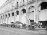 Fruit Wagons Unloading at Market, Havana, Cuba Photo