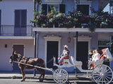 French Quarter Mule Ride in Carriage Photo by Carol Highsmith
