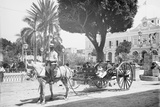 Matanzas Volanta, Large Wheeled Horse Drawn Tourist Coach Photo