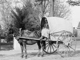 A Virginia Vegetable Cart Photo