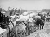 Snow Carts at the River after a Blizzard, New York Photo