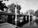 Boston Public Garden Suspension Bridge Photo