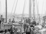 Unloading Oyster Luggers, Baltimore, Md. Photo