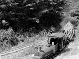 Logging Train, Harbor Springs, Mich. Photo
