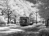 Streetcar, St. Charles Avenue, New Orleans Photo by Carol Highsmith