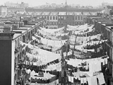 Yard of Tenement at Park Ave. and 107th St., New York Foto