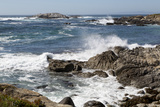 17-Mile Drive, Scenic Road Through Monterey, California Photo by Carol Highsmith