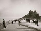 Lake Shore Drive, Lincoln Park, Chicago, Ill. Photo