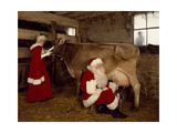Santa Milks a Cow Prints by Carol Highsmith