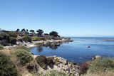 Road Through Pacific Grove and Pebble Beach Photo by Carol Highsmith