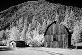 Barn, Rural Montana Prints by Carol Highsmith