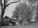 Two Rural Cabins, Madison, North Carolina Photo by Carol Highsmith