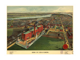 Birds Eye View of Boston - 1902 Posters