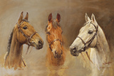 We Three Kings Giclee Print by Susan Crawford