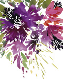 Floral Splash I Giclee Print by Kelly Ventura