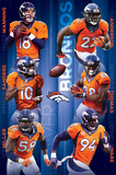 Denver Broncos- Team 2015 Posters