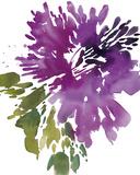 Floral Splash I Plakater af Kelly Ventura