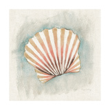 Coastal Mist Scallop Art by Elyse DeNeige