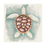 Coastal Mist Sea Turtle Posters by Elyse DeNeige