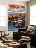Shenandoah National Park, Virginia - Skyline Drive Wall Mural by  Lantern Press